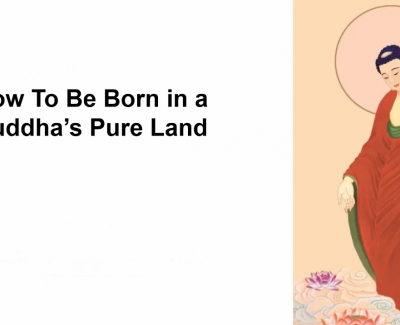 How to be born in a Buddha's Pure Land