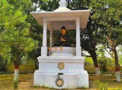 Rajgir-Bamboo Grove